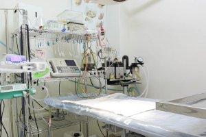 敦品動物醫院 手術房