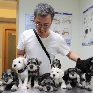 爸爸與七隻毛孩子們